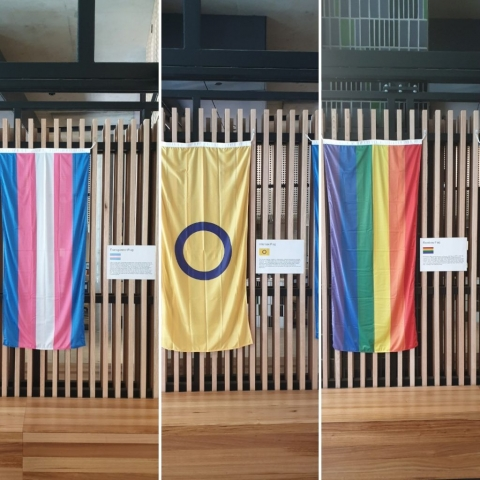 Transgender flag, intersex flag and rainbow flag.